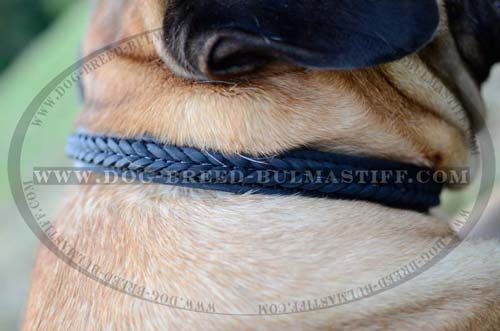Choke dog collar braided