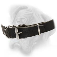 Bullmastiff  collar with D-ring