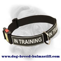 Bullmastiff nylon dog collar with handle