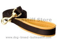 Padded Handle Dog Lead (Leash) for Bullmastiff