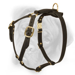 Pure leather dog harness for Bullmastiff