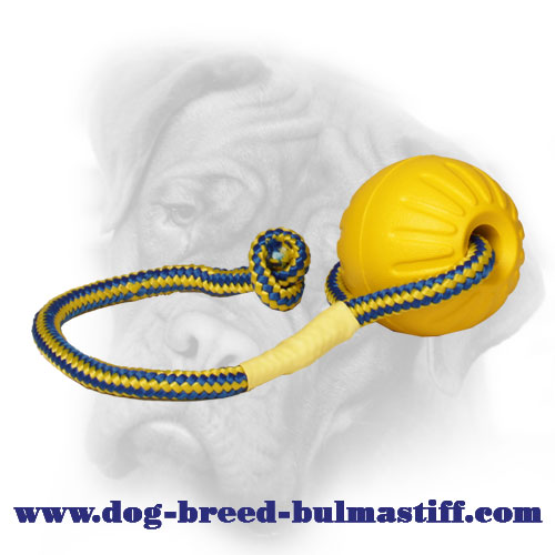 Superb Foam Bullmastiff Toy with Nylon Rope - Medium