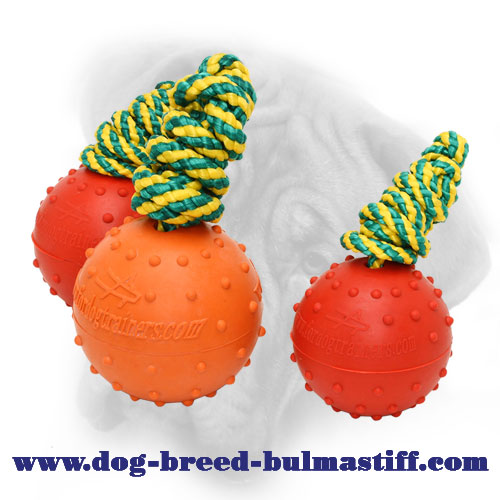 Rubber Bullmastiff Ball for Water Activities - Large