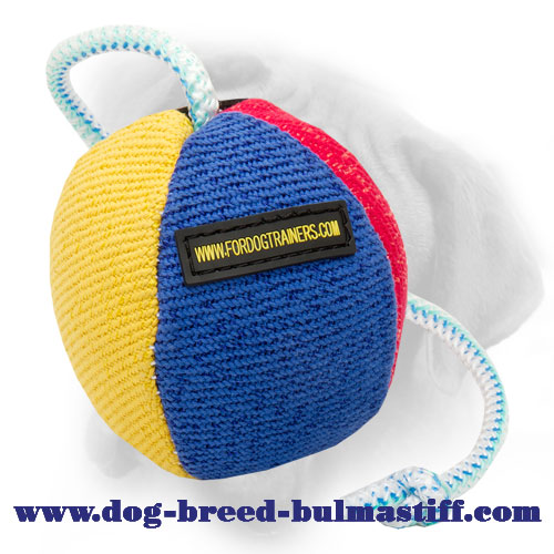 Great Bite Ball To Train Your Bullmastiff
