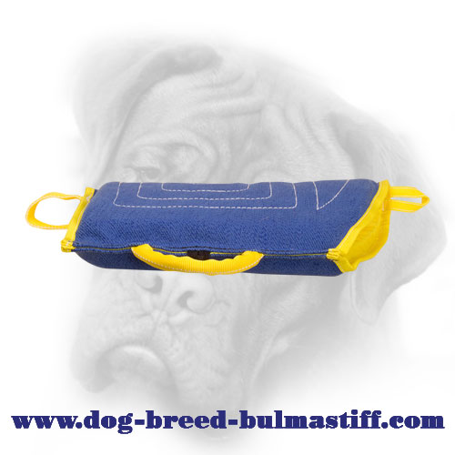 Professional French Linen Bullmstiff Bite Sleeve for Puppy Training