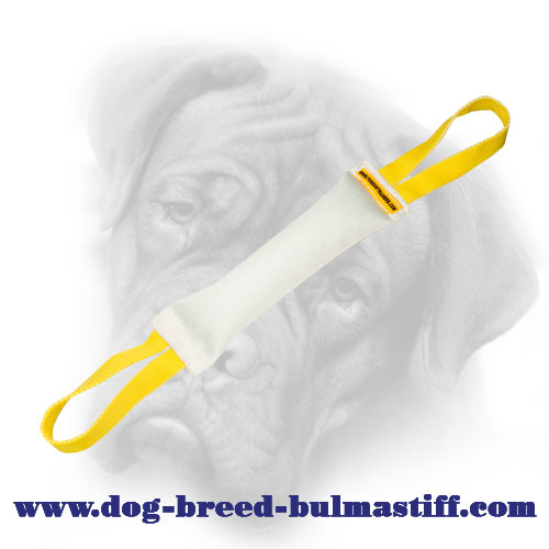 Super Durable Fire Hose Bullmastiff Bite Tug