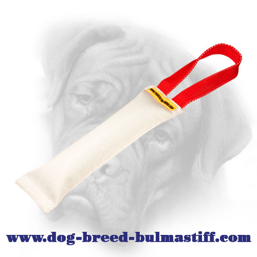 Pocket Puppy Fire Hose Bullmastiff Bite Tug