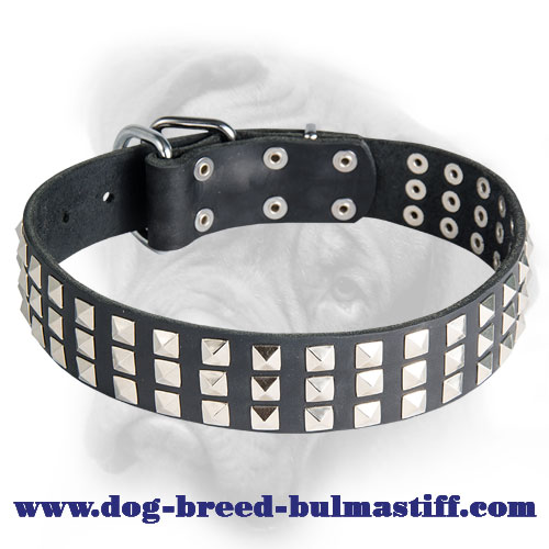 Unbelievable Leather Collar for Bullmastiff Breed