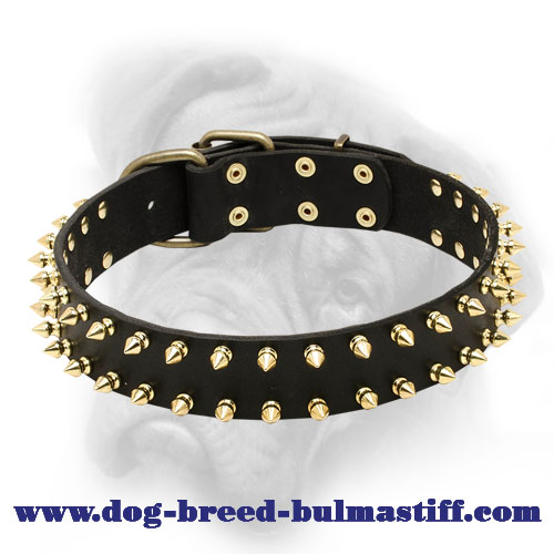 Fabulous Leather Spiked Collar for Bullmastiff Breed