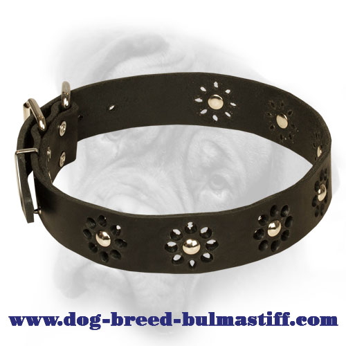 """Elegant Flower"" Bullmastiff Collar with Chic Decoration"