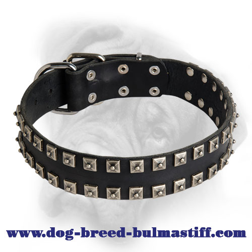 Delicate Caterpillar Leather Bullmastiff Collar for Everyday Activities