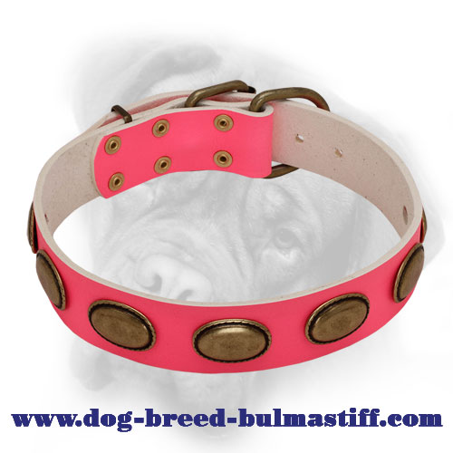 Splendid Pink Leather Bullmastiff Collar with Brass Ovals