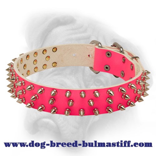 Adorned Pink Leather Collar for Bullmastiff with Blue Stones