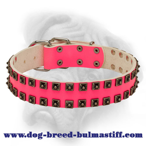 Chic Leather Pink Caterpillar Collar for She-Bullmastiff
