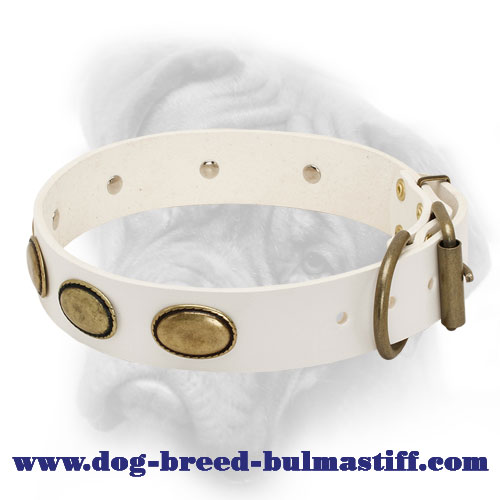 Retro White Leather Collar for Bullmastiff Breed