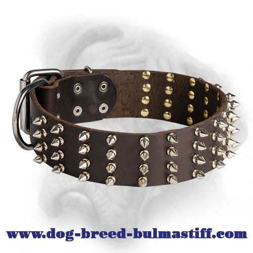 Extra Wide Leather Bullmastiff Collar with 4 Rows of Spikes