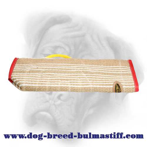 Protective Bite Sleeve Cover for Bullmastiff Training