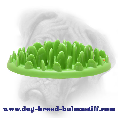 "The Interactive ""Entertaining Lawn-like Tray"" to feed your Bullmastiff"