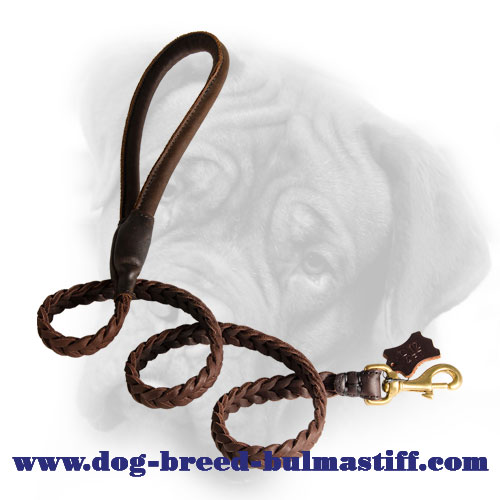 Exclusive Braided Walking/Training Leather Leash for Bullmastiff
