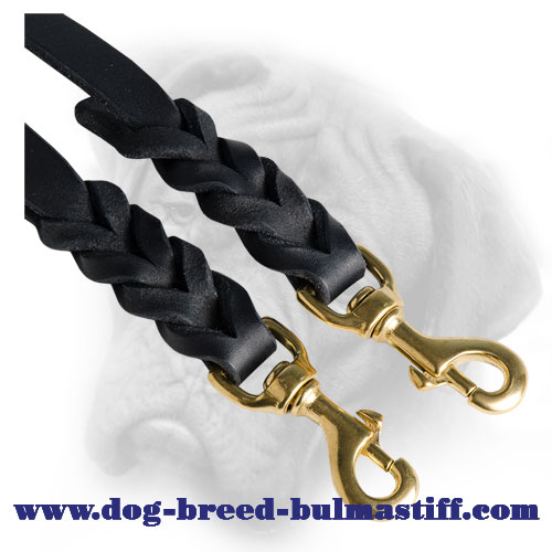 Wonderful Leather Braided Bullmastiff Coupler