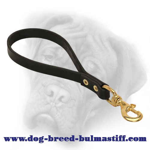 Short Leather Leash for Bullmastiff Breed