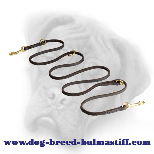 Walking and Training Leather Bullmastiff Leash
