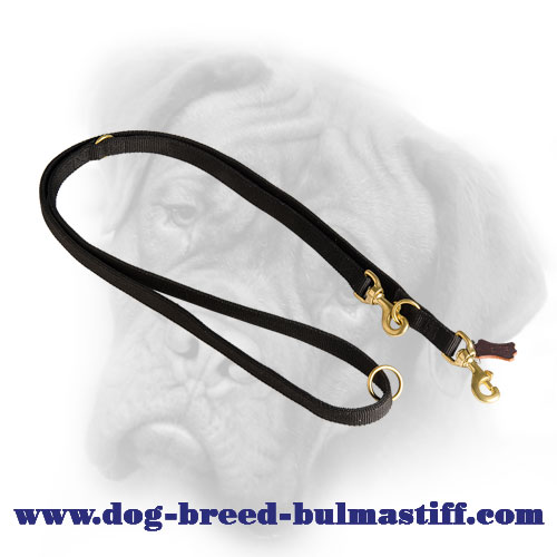 Multitask Nylon Bullmastiff Leash for Various Occasions