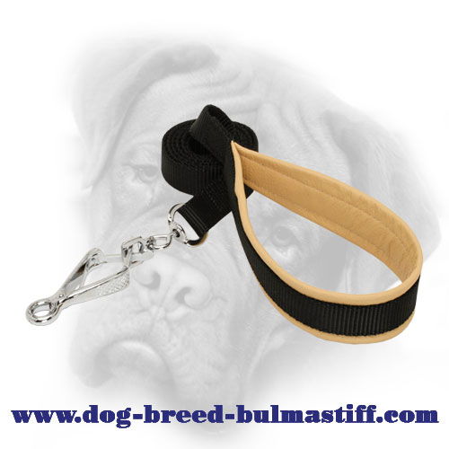 First-Rate Nylon Bullmastiff Leash with Nickel HS Snap Hook
