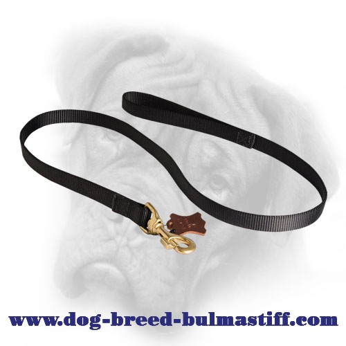 Feature-Rich Nylon Bullmastiff Leash