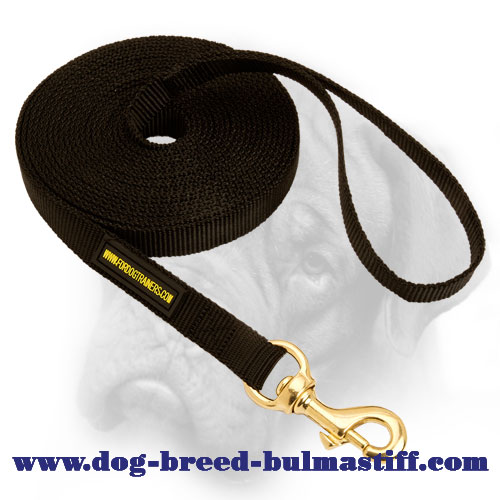 Practical Tracking and Training Nylon Leash for Bullmastiff