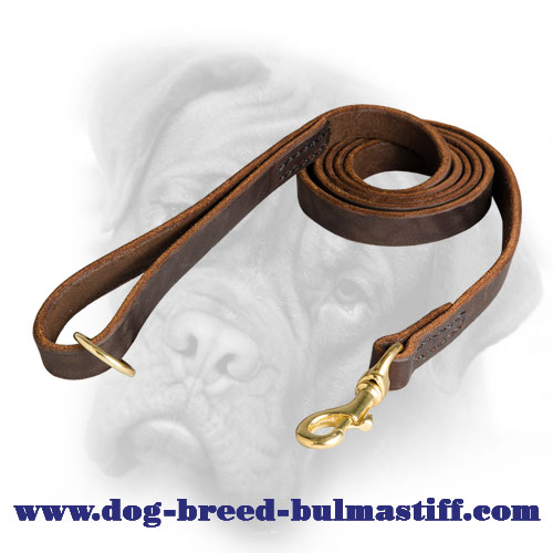 Practical Leather Bullmastiff Leash Reliably Stitched
