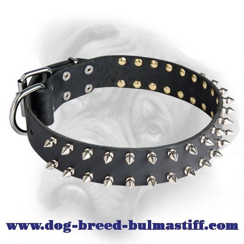 Great Leather Bulmastiff Dog Collar Decoraed With Silver-like Spikes