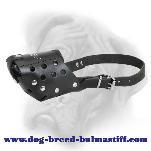 Walking Leather Dog Muzzle for Bullmastiff Breed