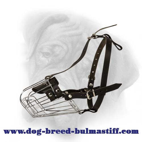 Bullmastiff Wire Basket Dog Muzzle