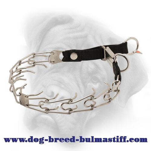 Stainless Steel Bullmastiff Pinch Collar with Click Lock Buckle and Nylon Loop - 1/8 inch (3.2 mm)