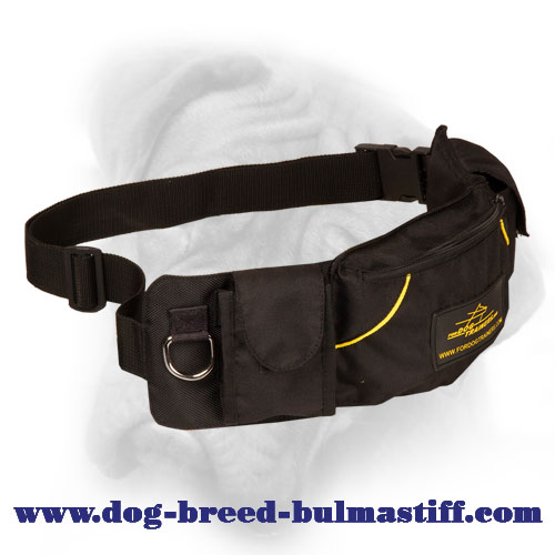 Convenient Nylon Pouch with Three Pockets for Bullmastiff Training