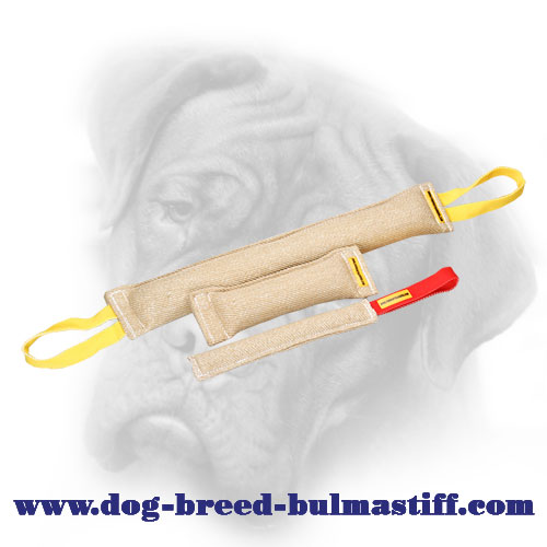 Set of Handy Jute Bite Tugs for Bullmastiff Puppy or Young Dog