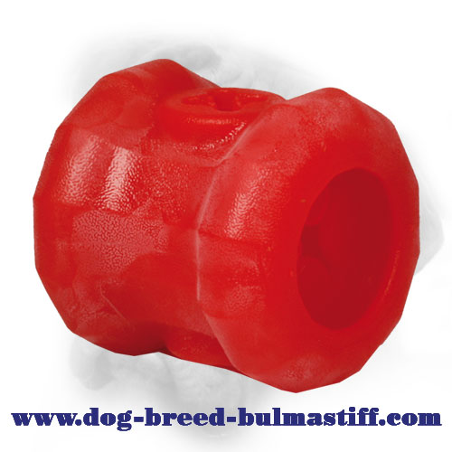 "Large ""Play and Feed"" Foam Chew Bullmastiff Fire Plug Toy"