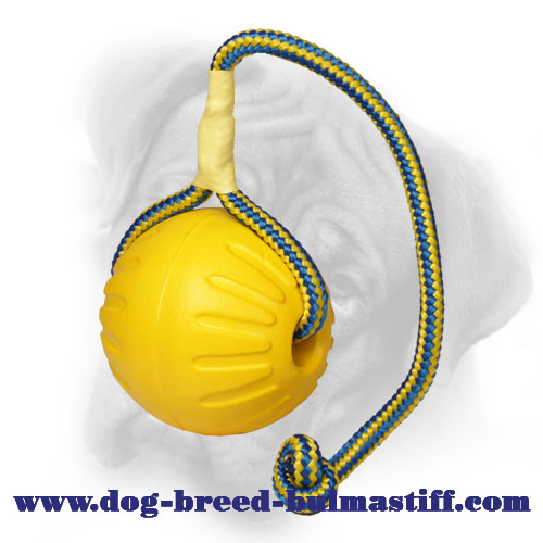 Flying High Foam Lightweight Floating Ball for Bullmastiff - Large