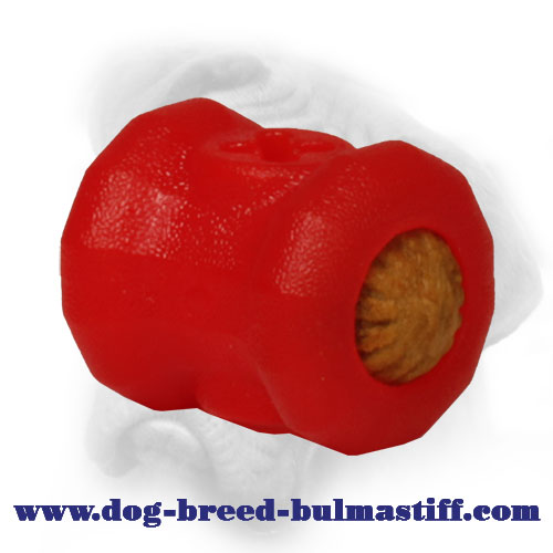Small Foam Chewing Fire Plug for Bullmastiff