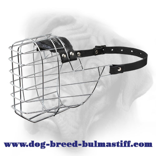 'The Silecer' Exquisite Wire Basket Bullmastiff Muzzle
