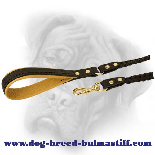 Dog Leash equipped with gold-like hardware