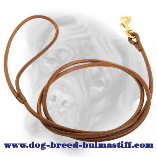Leather dog Leash equipped with snap hook