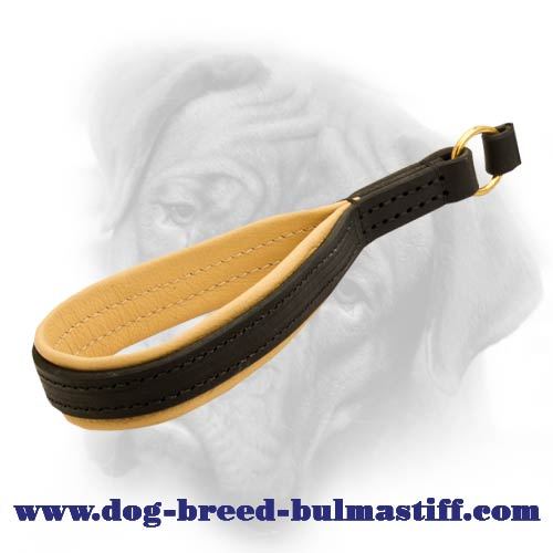 Braided Bullmastiff Dog leash