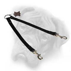 Bullmastiff coupler leash for walks with two canines