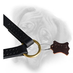 Bullmastiff coupler with brass O-ring for leash  attachment