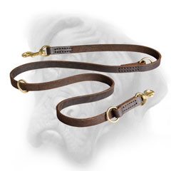 Leather Bullmastiff leash with strong brass hardware