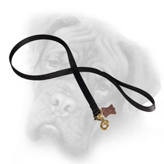 Nylon Bullmastiff leash resistant to water