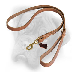 Feature-rich Bullmastiff leash for any dog activity