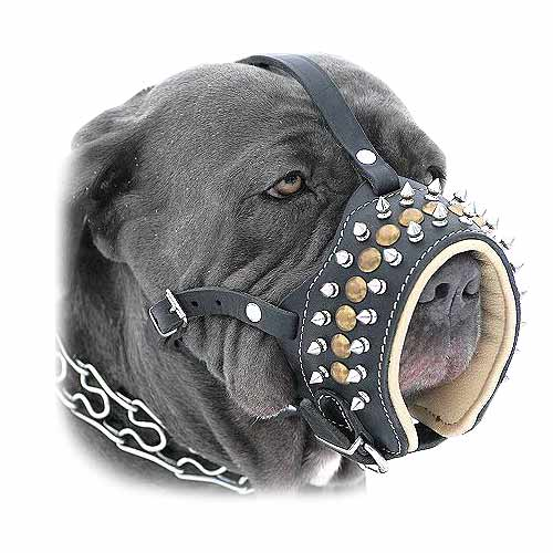 Handcrafted Royal Spiked Leather Dog Muzzle